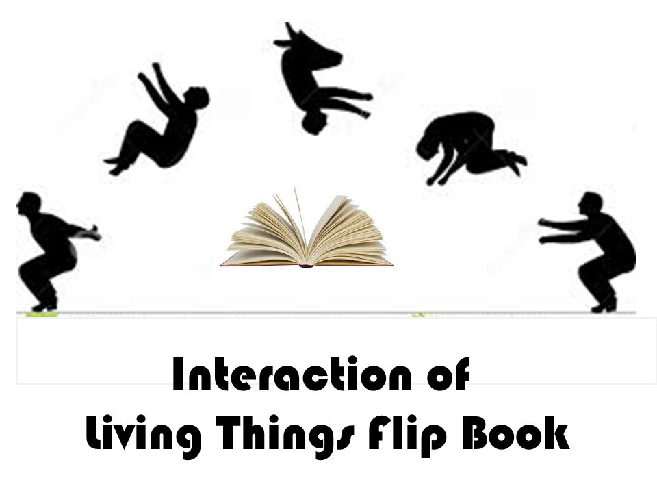Interaction of Living Things Flip Book