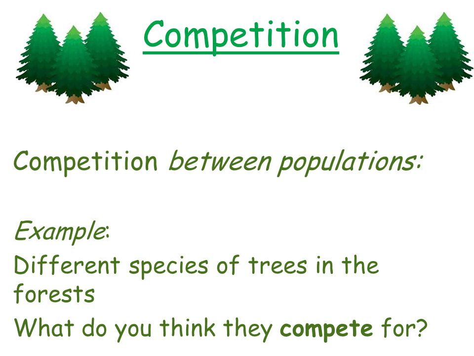 Competition Competition between populations: Example: Different species of trees in the forests What do you think they compete for?