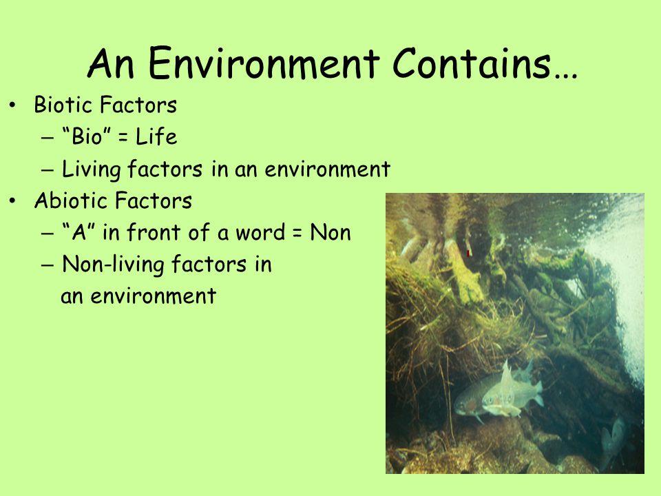An Environment Contains… Biotic Factors – Bio = Life – Living factors in an environment Abiotic Factors – A in front of a word = Non – Non-living factors in an environment