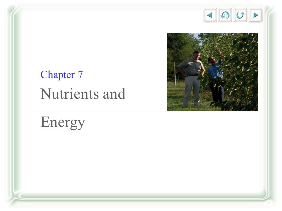 Chapter 7 Nutrients and Energy