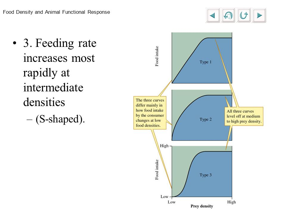 Food Density and Animal Functional Response 3.
