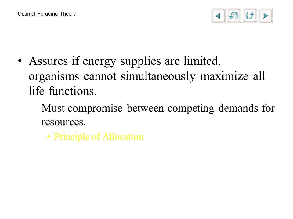 Optimal Foraging Theory Assures if energy supplies are limited, organisms cannot simultaneously maximize all life functions.