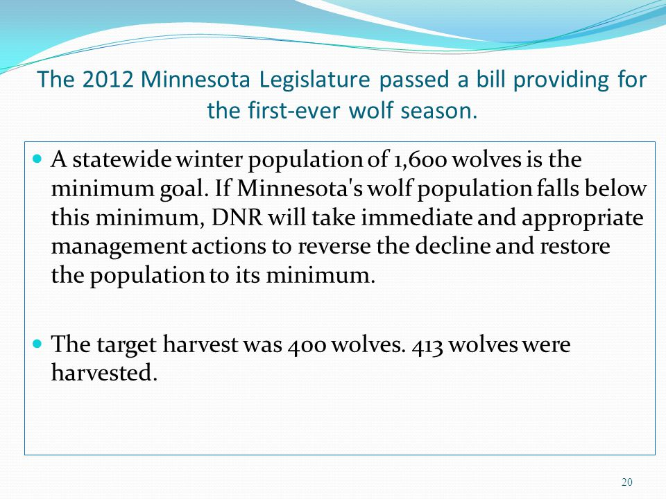 The 2012 Minnesota Legislature passed a bill providing for the first-ever wolf season. A statewide winter population of 1,600 wolves is the minimum go