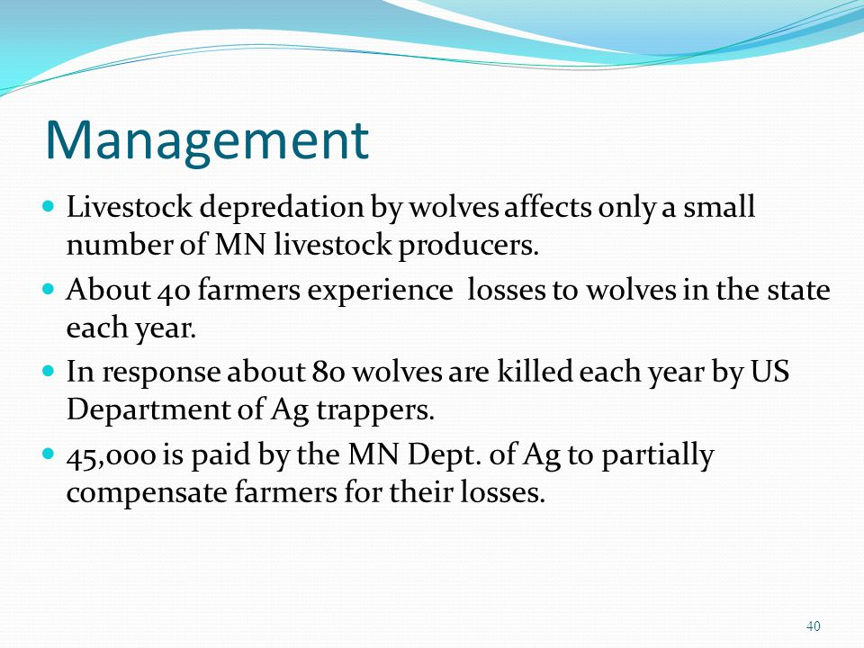 Management Livestock depredation by wolves affects only a small number of MN livestock producers. About 40 farmers experience losses to wolves in the