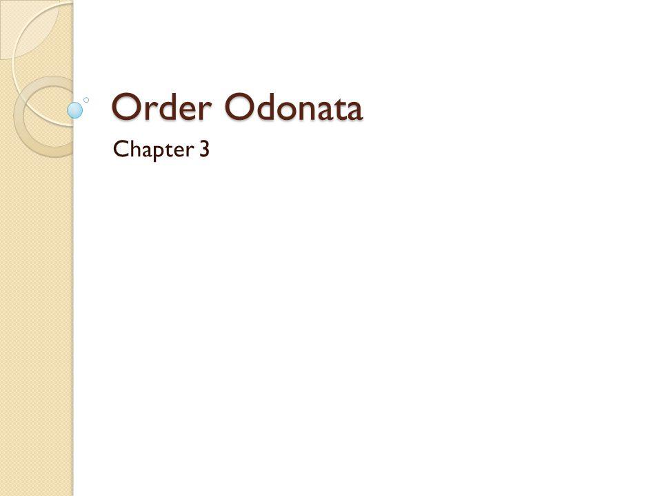 Order Odonata Chapter 3