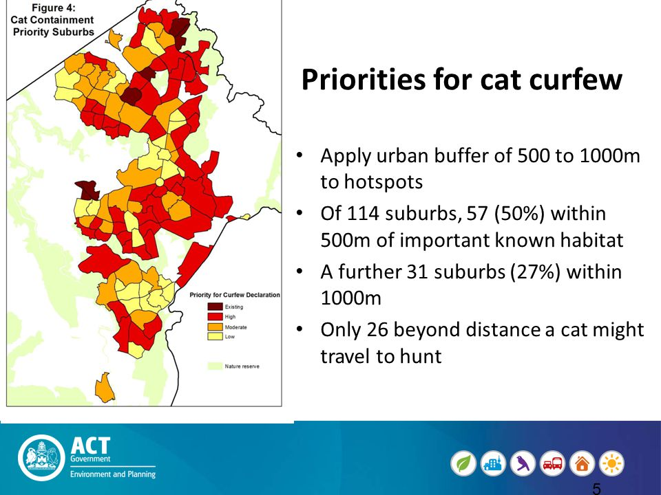 Priorities for cat curfew cat cur Apply urban buffer of 500 to 1000m to hotspots Of 114 suburbs, 57 (50%) within 500m of important known habitat A further 31 suburbs (27%) within 1000m Only 26 beyond distance a cat might travel to hunt 5