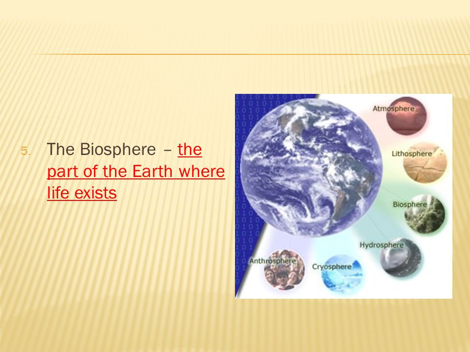 5. The Biosphere – the part of the Earth where life exists