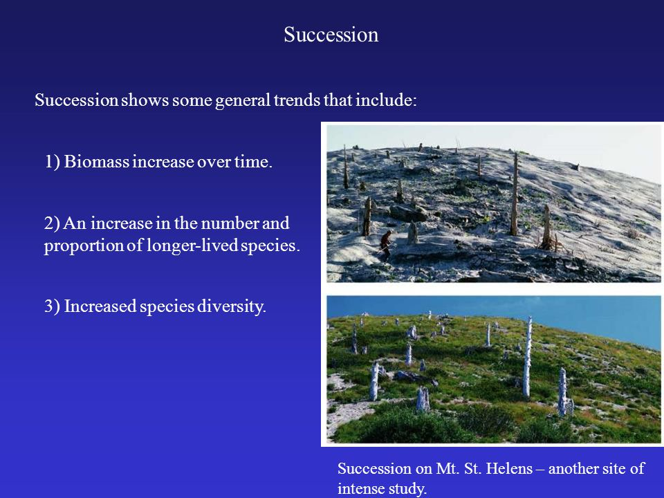 Succession Succession shows some general trends that include: 1) Biomass increase over time.