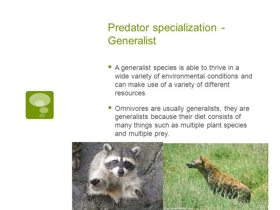 Predator specialization - Generalist  A generalist species is able to thrive in a wide variety of environmental conditions and can make use of a vari