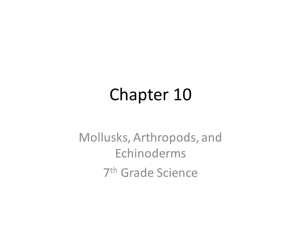 Chapter 10 Mollusks, Arthropods, and Echinoderms 7 th Grade Science