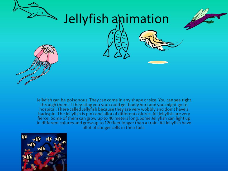 Jellyfish animation Jellyfish can be poisonous. They can come in any shape or size. You can see right through them. If they sting you you could get ba