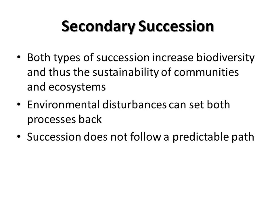 Secondary Succession Both types of succession increase biodiversity and thus the sustainability of communities and ecosystems Environmental disturbanc