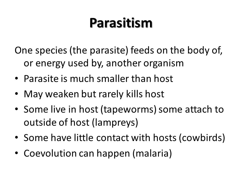 Parasitism One species (the parasite) feeds on the body of, or energy used by, another organism Parasite is much smaller than host May weaken but rare