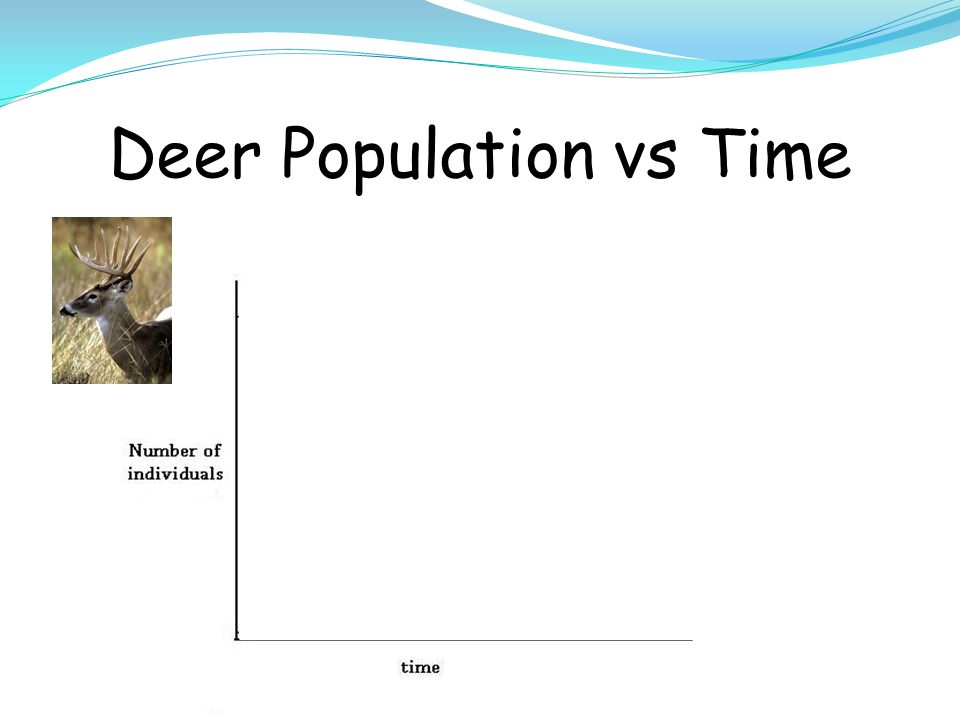 Deer Population vs Time