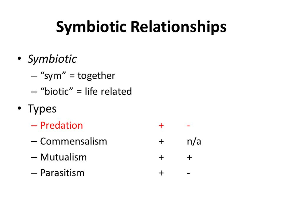 Symbiotic Relationships Symbiotic – sym = together – biotic = life related Types – Predation+ - – Commensalism+ n/a – Mutualism+ + – Parasitism+-
