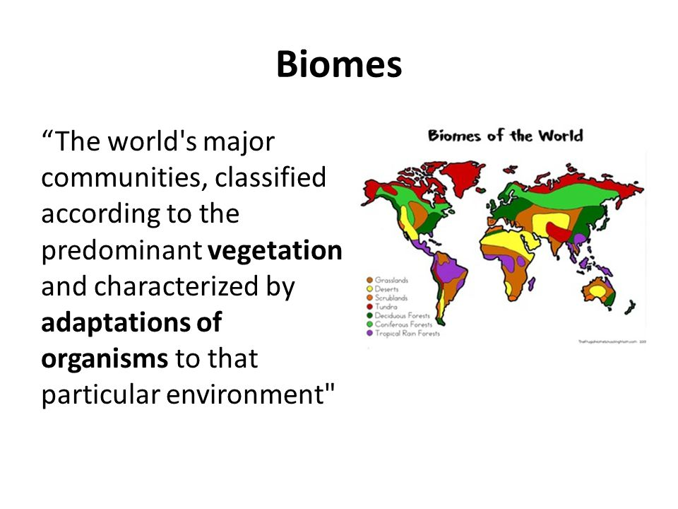 Biomes The world s major communities, classified according to the predominant vegetation and characterized by adaptations of organisms to that particular environment