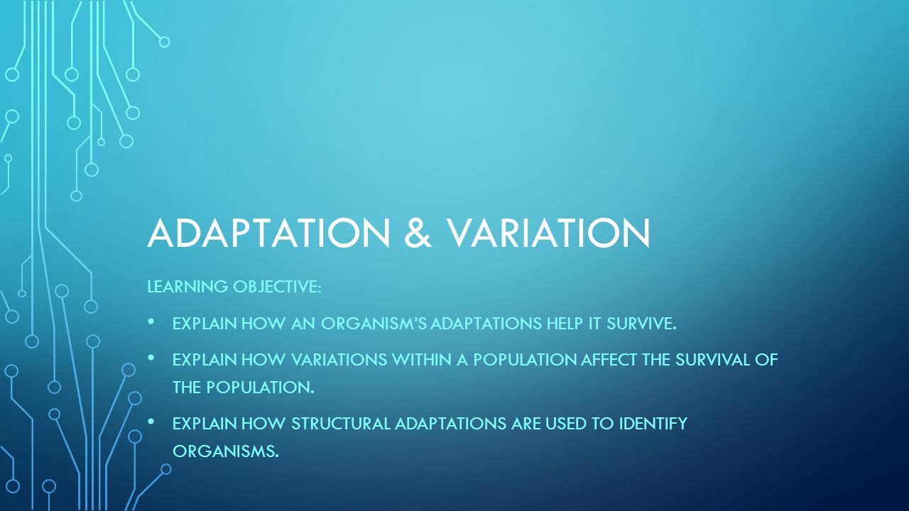 ADAPTATION & VARIATION LEARNING OBJECTIVE: EXPLAIN HOW AN ORGANISM'S ADAPTATIONS HELP IT SURVIVE. EXPLAIN HOW VARIATIONS WITHIN A POPULATION AFFECT TH