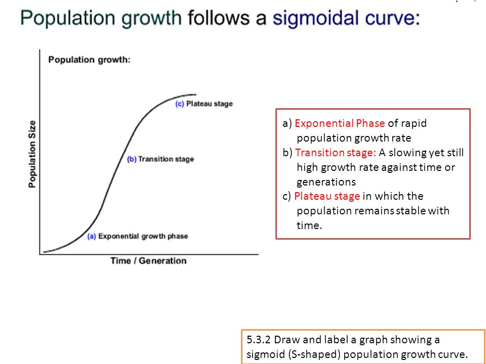 5.3.2 Draw and label a graph showing a sigmoid (S-shaped) population growth curve. a) Exponential Phase of rapid population growth rate b) Transition