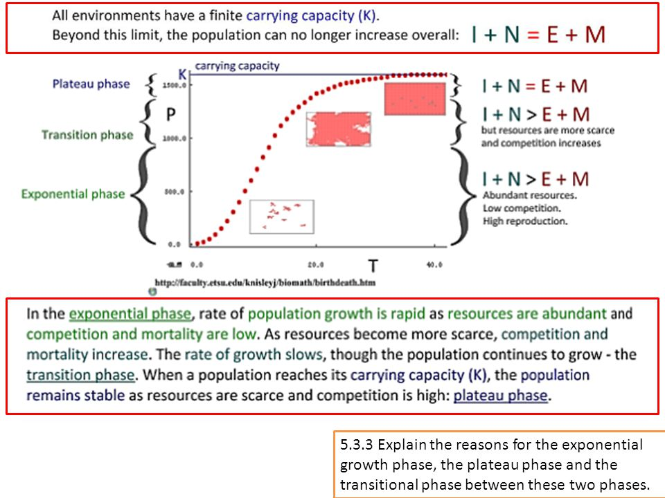 5.3.3 Explain the reasons for the exponential growth phase, the plateau phase and the transitional phase between these two phases.