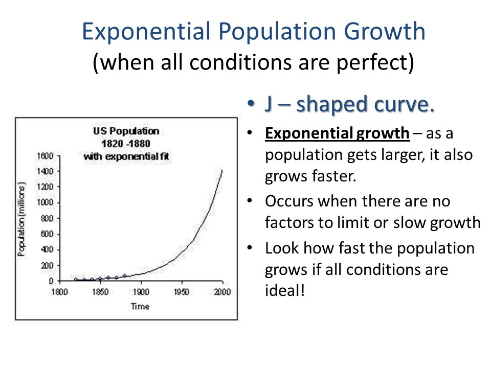 Exponential Population Growth (when all conditions are perfect) J – shaped curve.