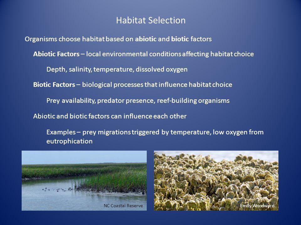 Habitat Selection Organisms choose habitat based on abiotic and biotic factors Abiotic Factors – local environmental conditions affecting habitat choi