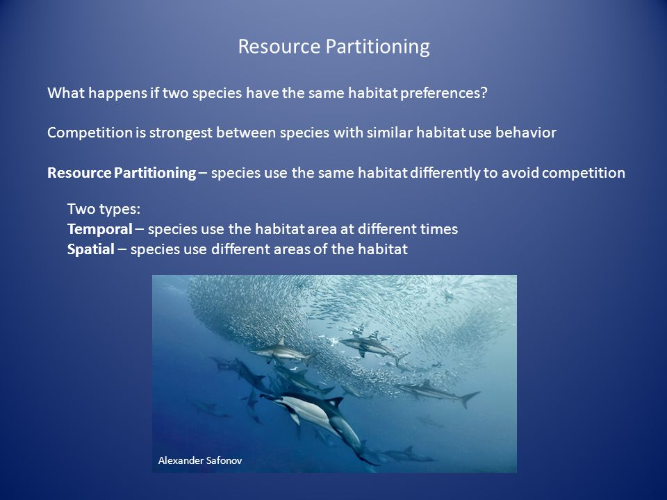 Resource Partitioning What happens if two species have the same habitat preferences.