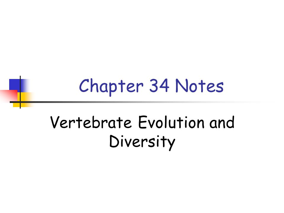 Chapter 34 Notes Vertebrate Evolution and Diversity