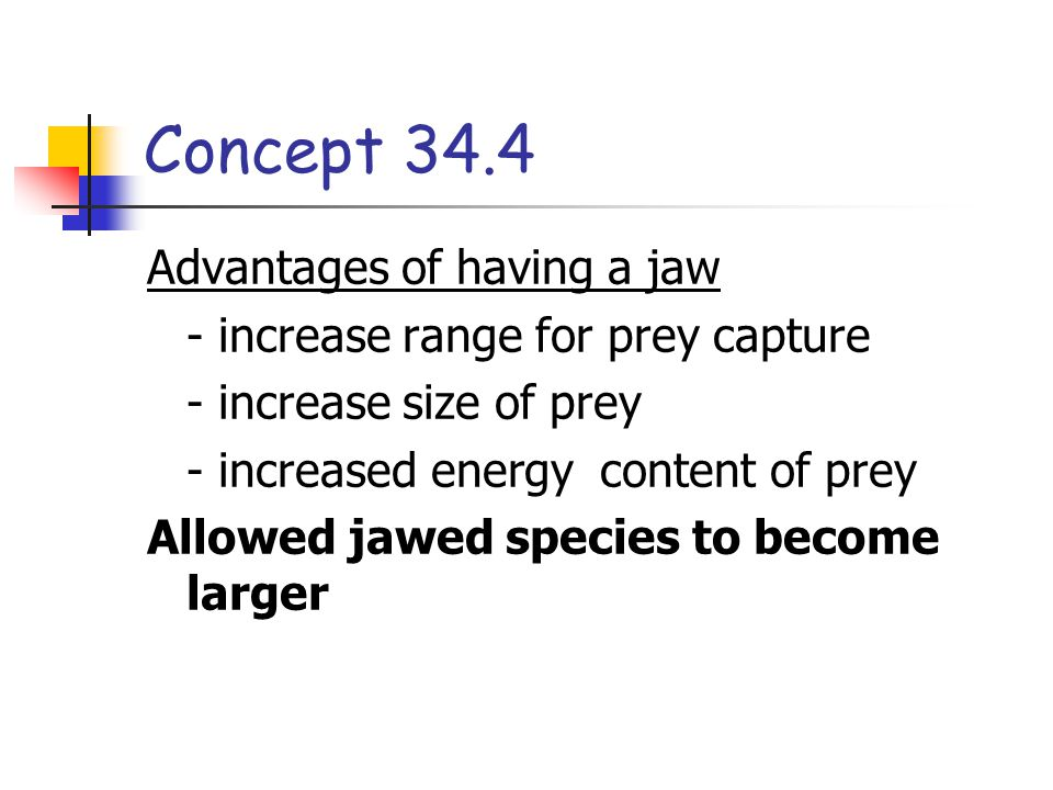 Concept 34.4 Advantages of having a jaw - increase range for prey capture - increase size of prey - increased energy content of prey Allowed jawed species to become larger