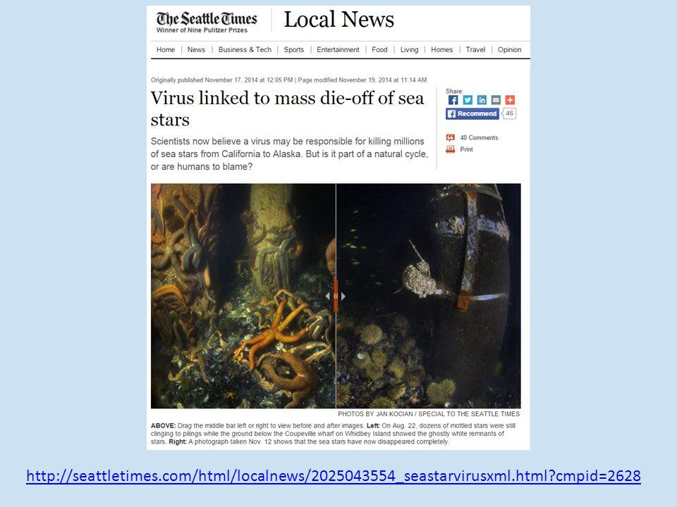 http://seattletimes.com/html/localnews/2025043554_seastarvirusxml.html cmpid=2628