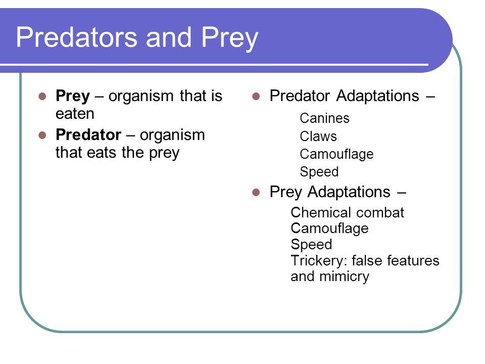 Predators and Prey Prey – organism that is eaten Predator – organism that eats the prey Predator Adaptations – Canines Claws Camouflage Speed Prey Ada