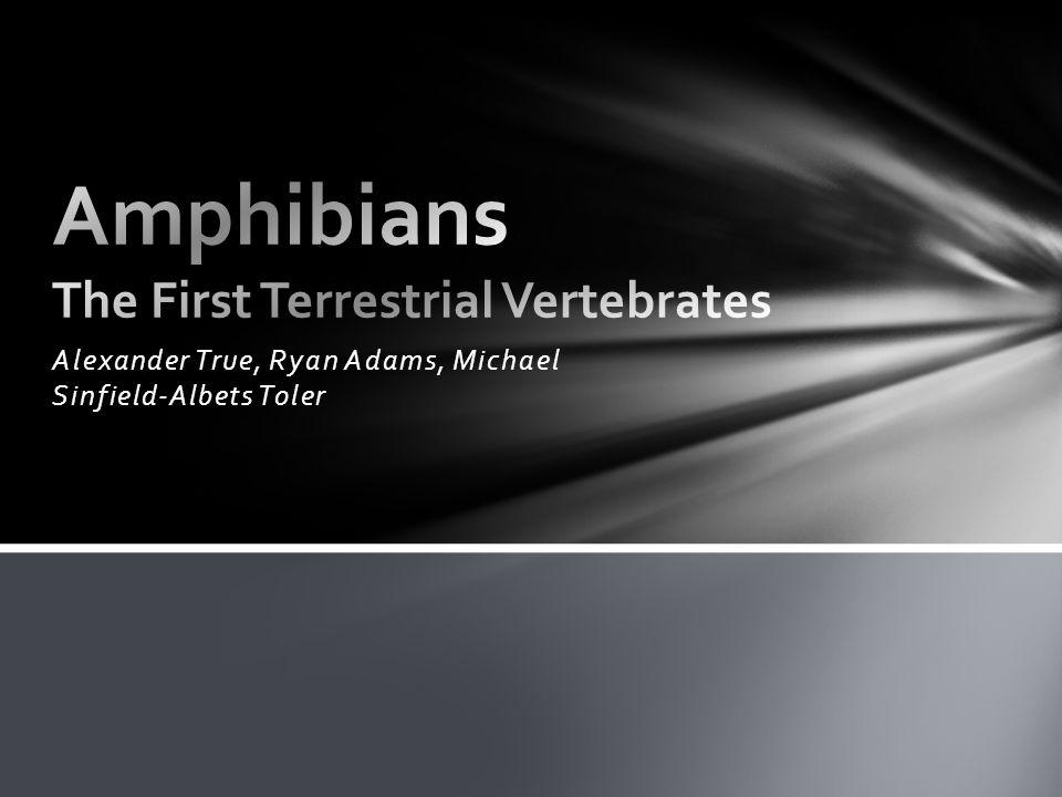 Alexander True, Ryan Adams, Michael Sinfield-Albets Toler