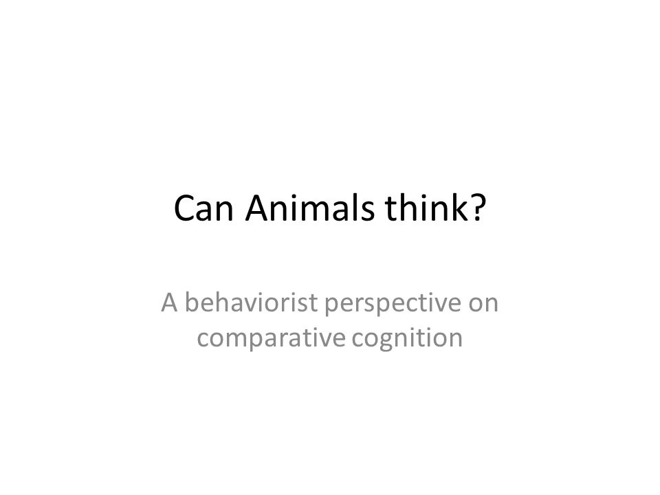 Can Animals think A behaviorist perspective on comparative cognition