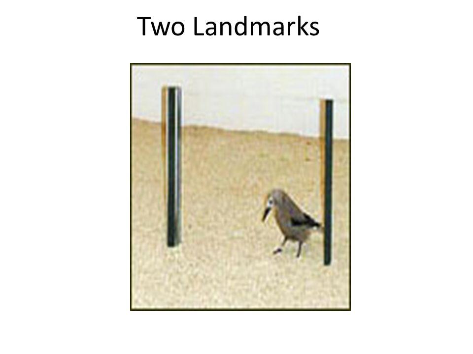 Two Landmarks