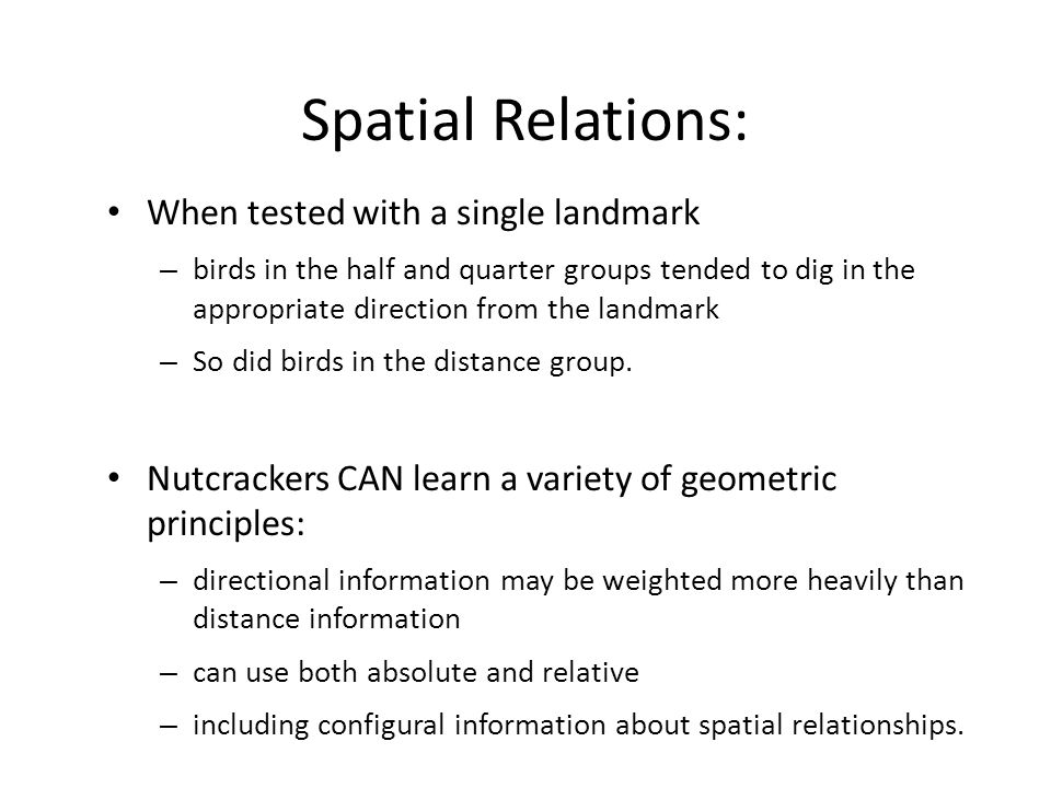 Spatial Relations: When tested with a single landmark – birds in the half and quarter groups tended to dig in the appropriate direction from the landmark – So did birds in the distance group.