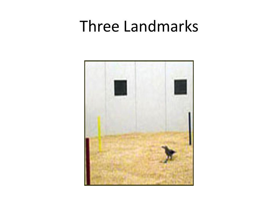 Three Landmarks