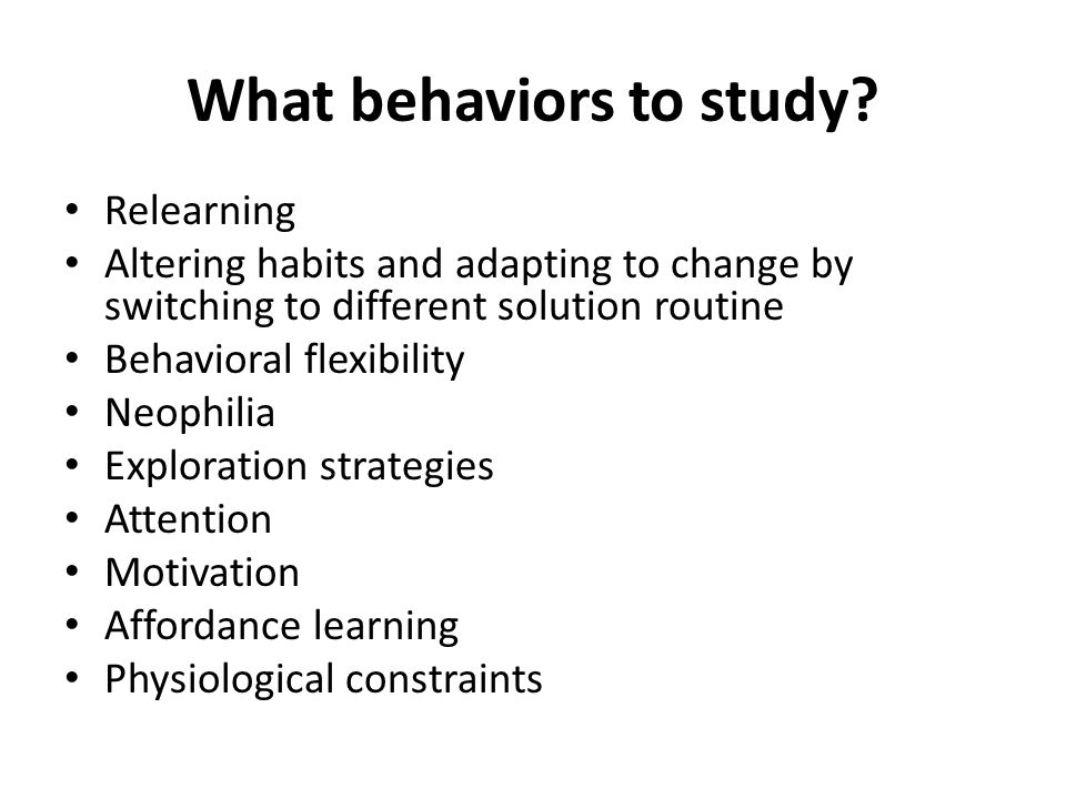 What behaviors to study? Relearning Altering habits and adapting to change by switching to different solution routine Behavioral flexibility Neophilia