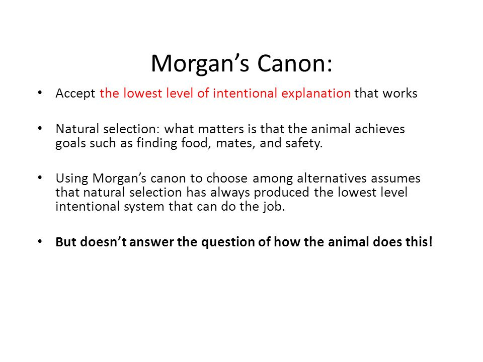 Morgan's Canon: Accept the lowest level of intentional explanation that works Natural selection: what matters is that the animal achieves goals such as finding food, mates, and safety.