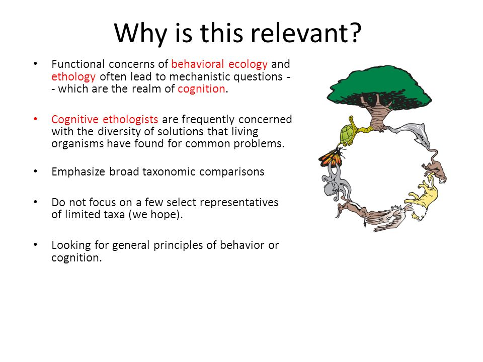 Why is this relevant? Functional concerns of behavioral ecology and ethology often lead to mechanistic questions - - which are the realm of cognition.