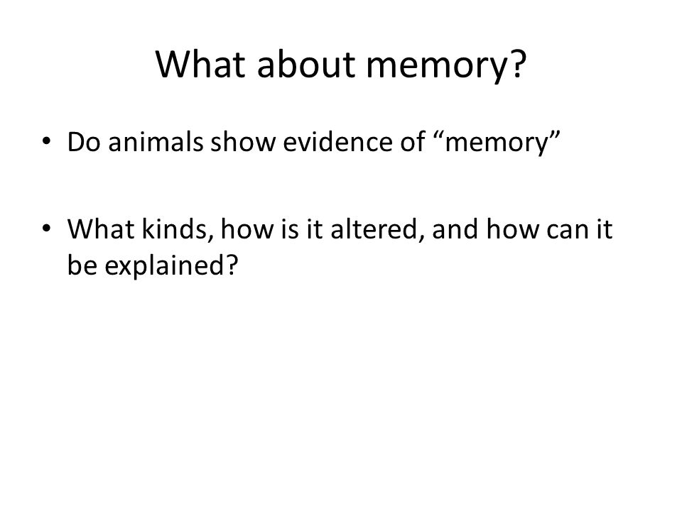 What about memory.