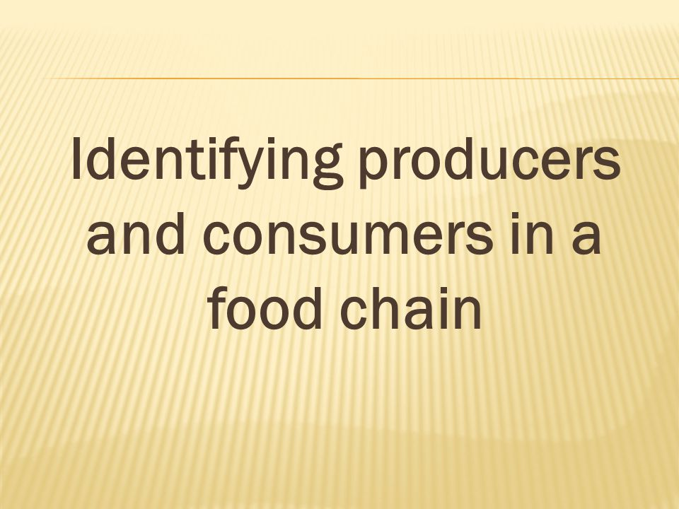 Identifying producers and consumers in a food chain