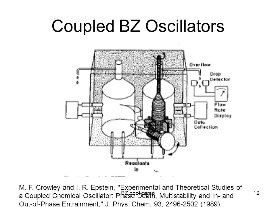 BZ boot camp12 Coupled BZ Oscillators M. F. Crowley and I.