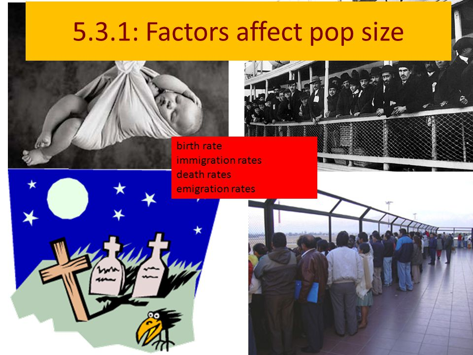 5.3.1: Factors affect pop size birth rate immigration rates death rates emigration rates