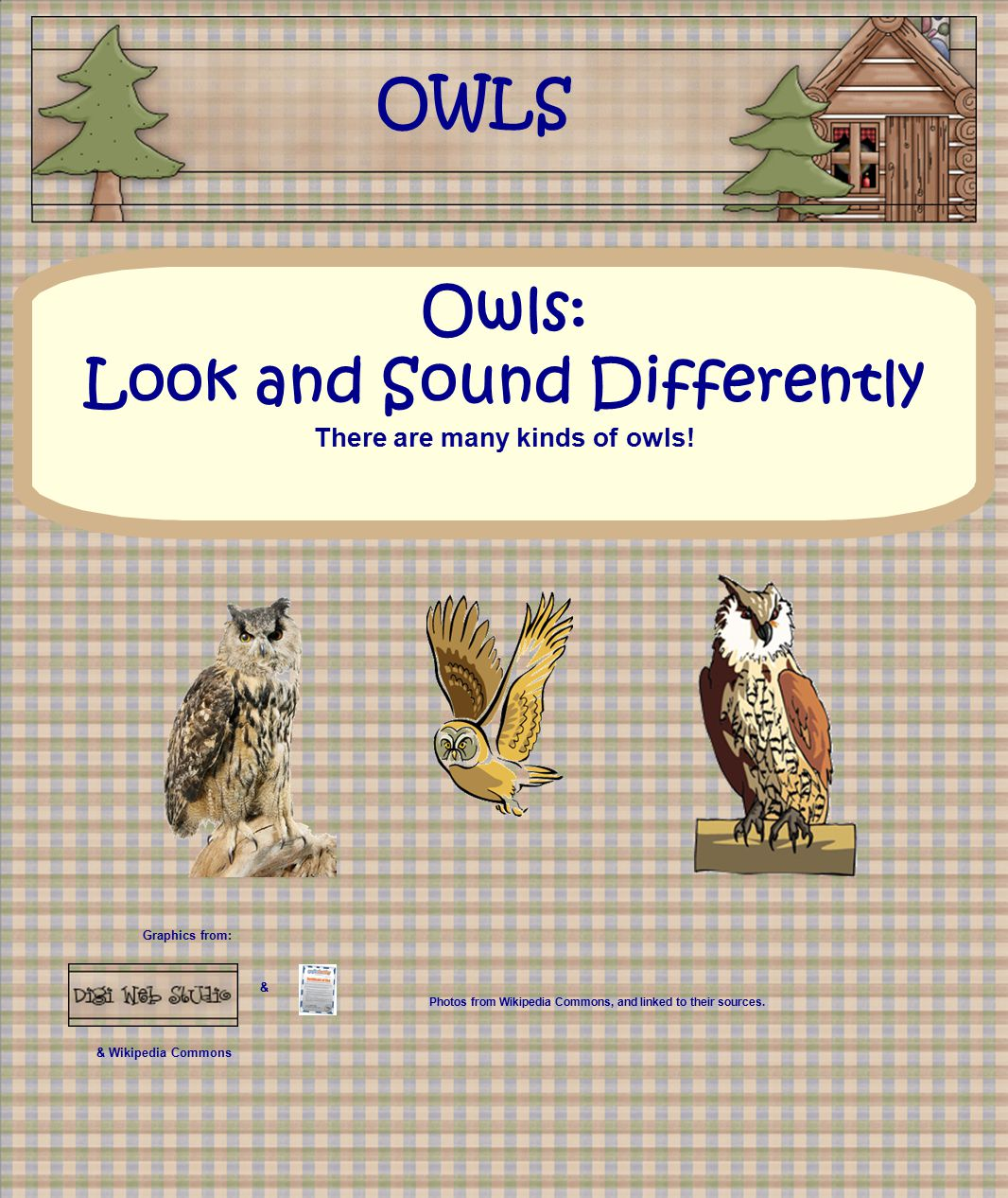 Graphics from: & & Wikipedia Commons Owls: Look and Sound Differently There are many kinds of owls! OWLS Photos from Wikipedia Commons, and linked to