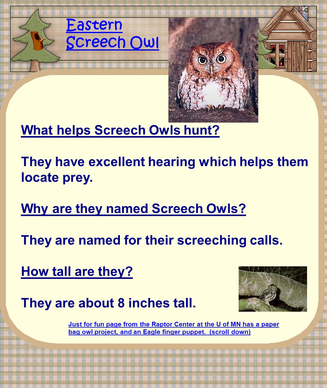 Just for fun page from the Raptor Center at the U of MN has a paper bag owl project, and an Eagle finger puppet. (scroll down) Eastern Screech Owl Wha
