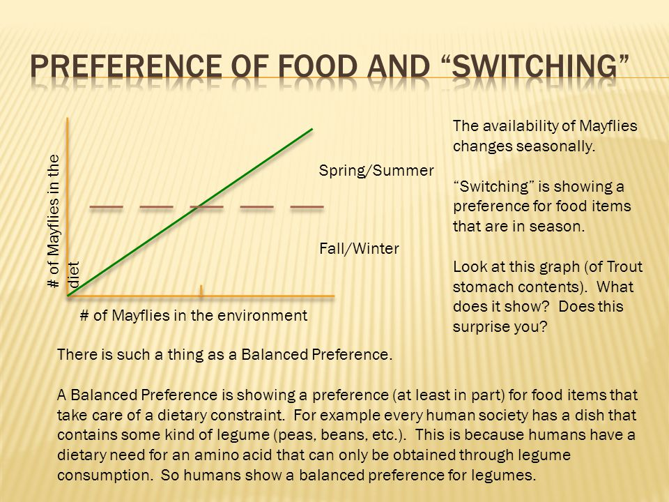 Spring/Summer Fall/Winter # of Mayflies in the environment # of Mayflies in the diet The availability of Mayflies changes seasonally.