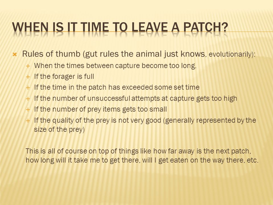  Rules of thumb (gut rules the animal just knows, evolutionarily):  When the times between capture become too long.