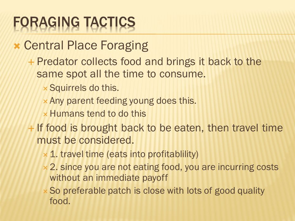  Central Place Foraging  Predator collects food and brings it back to the same spot all the time to consume.