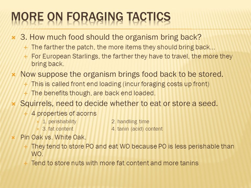  3. How much food should the organism bring back.