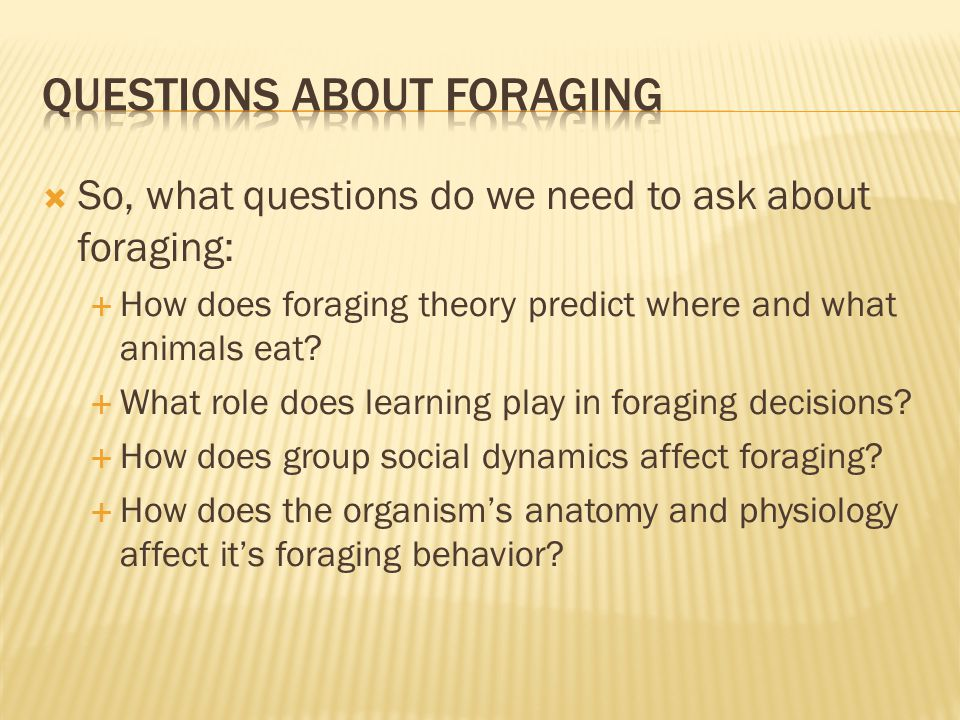  So, what questions do we need to ask about foraging:  How does foraging theory predict where and what animals eat.