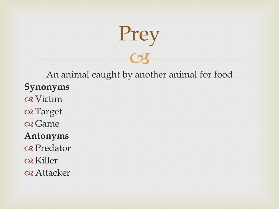  An animal caught by another animal for food Synonyms  Victim  Target  Game Antonyms  Predator  Killer  Attacker Prey